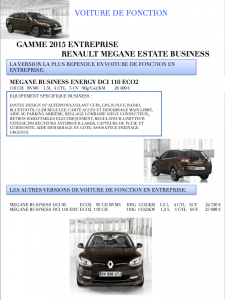 Renault MEGANE ESTATE BUSINESS 2015 (Voiture de Fonction)